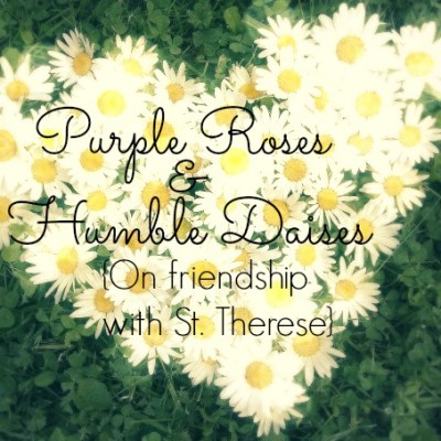 Purple Roses & Humble Daisies {Part 2}