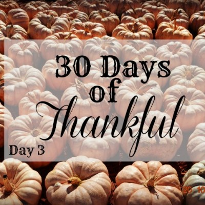 30 Days of Thankful: Day 3
