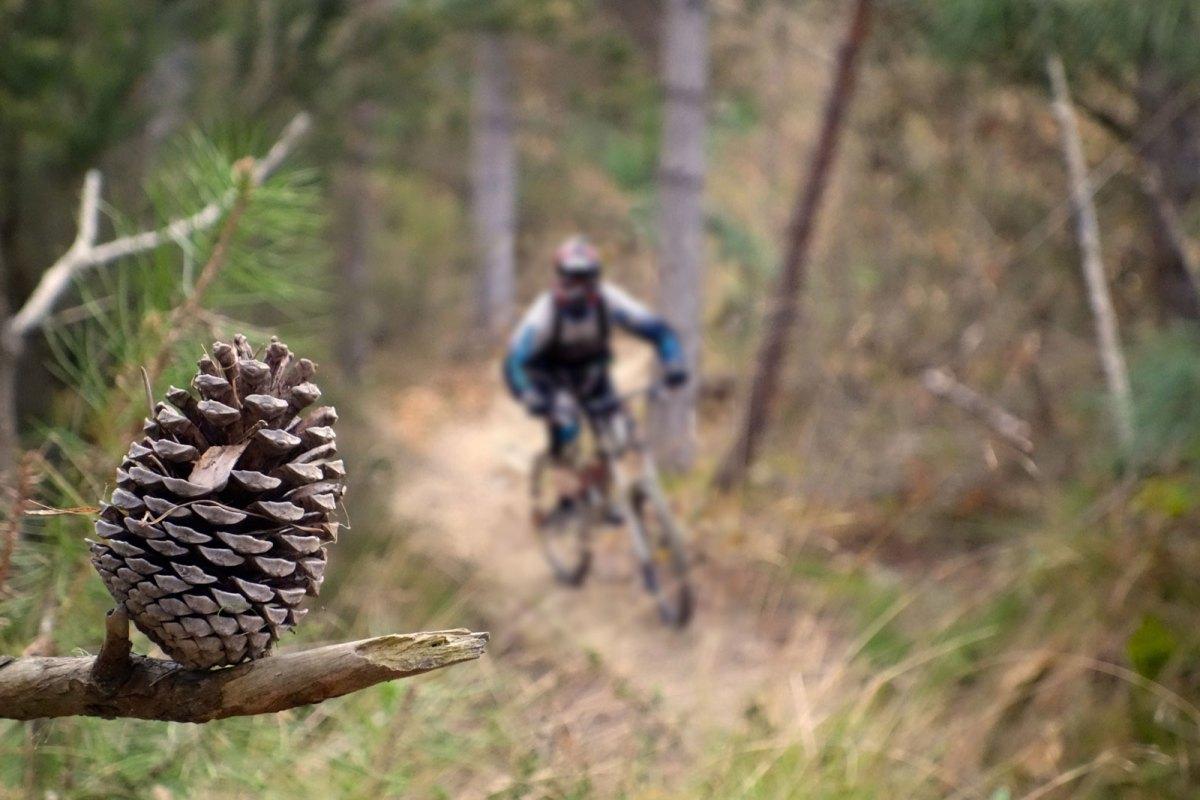 Bike Fotografie: Fokus und Schärfe