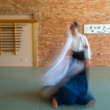 Two Rivers Aikido's New Website Design