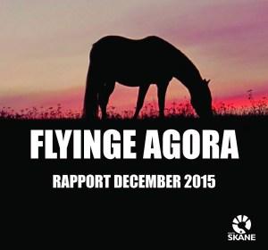 Flyinge Agora