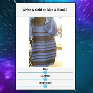White And Gold Or Blue And Black Delphi XE7 Firemonkey App Android IOS