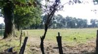 Alors que sont remis cet après-midi des déclaration de projets agricoles pour la ZAD de Notre-Dame-des-Landes, les associations France Nature Environnement Pays de la Loire, Bretagne-Vivante/SEPNB, Coordination régionale LPO Pays […]