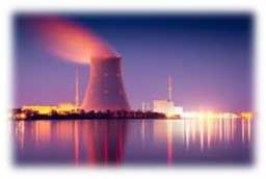 Nuclear Industry after Japan crisis