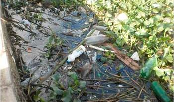 No-Bosque-da-Vera-Paz-mato-e-lixo-fazem-do-local-um-péssimo-cartão-postal