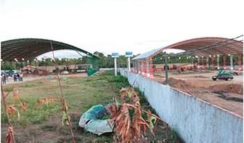 Barracões-dos-botos-Tucuxi-e-Cor-de-Rosa