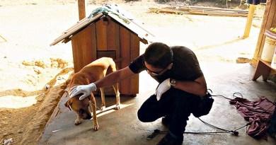 Homem é autuado por maltratar cachorro (Foto: Divulgação/Polícia Civil)