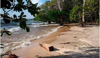 Área-da-Floresta-Nacional-do-Tapajós-Flona-em-Belterra
