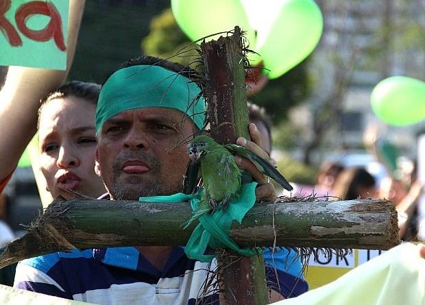 Protesto contra a morte de periquitos reuniu manifestantes em Manaus (Foto: Marcos Dantas/G1 AM)