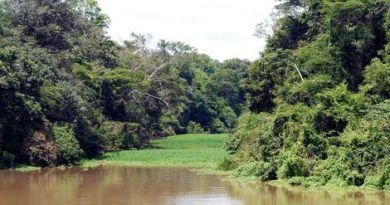 rios_da_amazonia