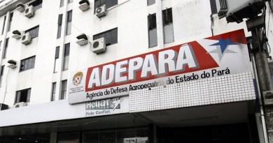 destaque-351547-adepara12