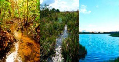 Estudos foram realizados em três tipos de cursos de riachos, na região de Canarana, no Mato Grosso