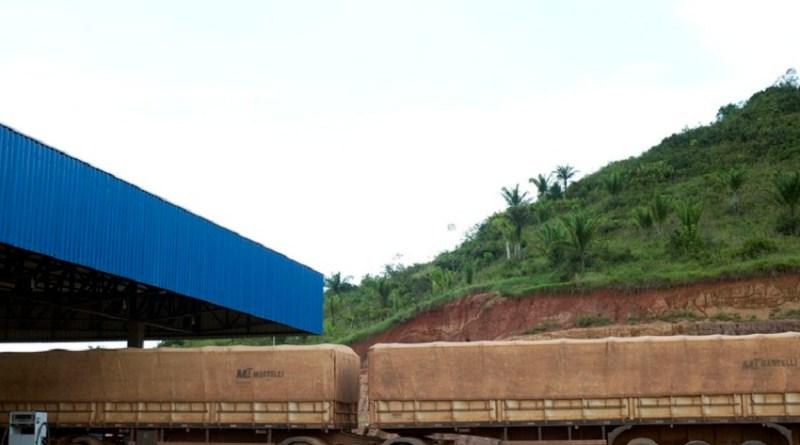 Falta de Milho no MT ,faz empresa paralisar frota em Novo Progresso