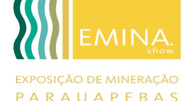 logo-emina-2