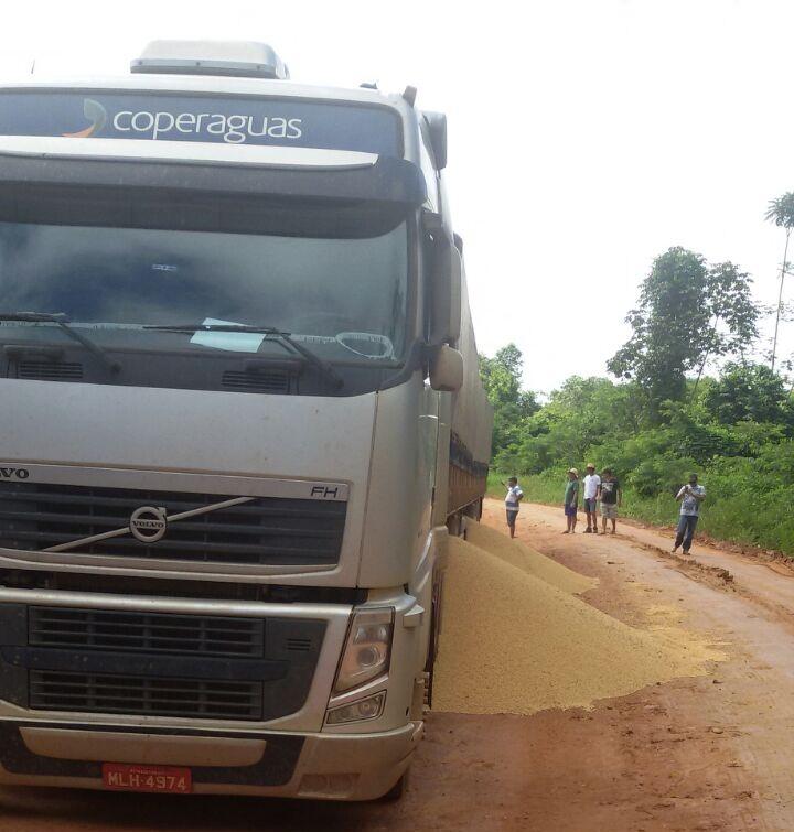 Motorista descarrega soja na rodovia BR-163 (Foto WhatsApp-Jornal Folha do Progresso)
