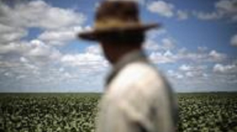 Produtor observa suas lavouras de soja em Barreiras, no Estado da Bahia 06/02/2014 REUTERS/Ueslei Marcelino
