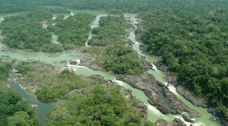 Floresta nacional do Jamanxim pode perder território; entenda