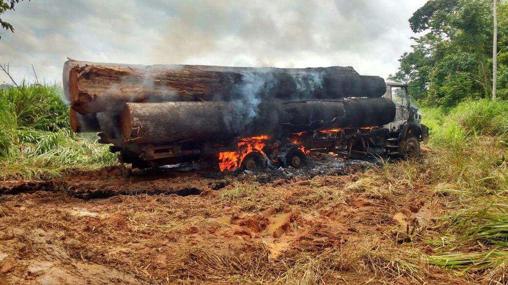 Após veto da MP 756 - Ibama mantém fiscalização para combater crimes ambientais na região