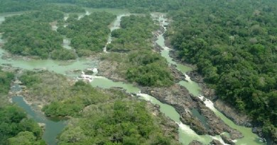 DATA: 13.01.2017 Situada a 1.600 km da capital Belem, entre os municipios de Itaituba e Trairao, o parque ambiental do Jamanxim e um santuario de 1.300 mil hectares onde vivem especies nativas da Amazônia.   FOTO:Divulgacao ***DIREITOS RESERVADOS. NÃO PUBLICAR SEM AUTORIZAÇÃO DO DETENTOR DOS DIREITOS AUTORAIS E DE IMAGEM***