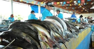 peixe_santarem_2