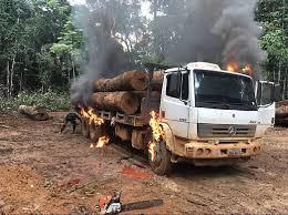 Ibama destrói caminhão carregado e madeira (Foto Divulgação)
