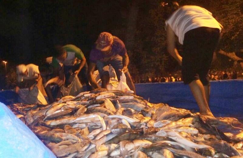 Pescado apreendido é distribuído à população apreensao_pescado_lago_grande_2