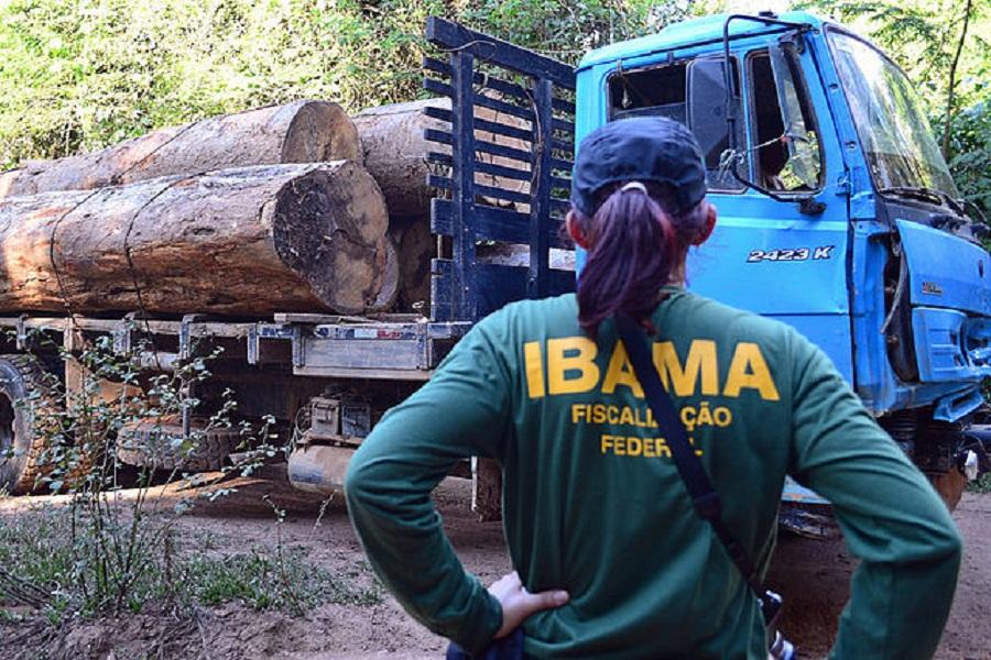 """Madeireiros-""""Não somos bandidos só queremos trabalhar"""" - IBAMA combate à ilegalidade"""