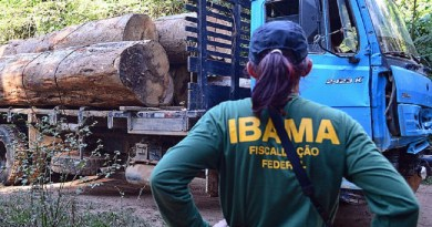 Concurso do Ibama deve oferecer 1.888 oportunidades com salários de até R$ 7,7 mil