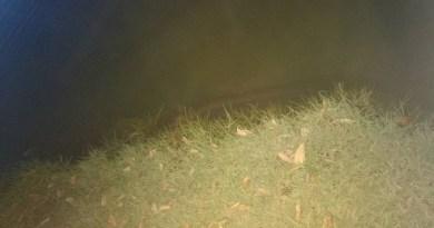 puraque lago