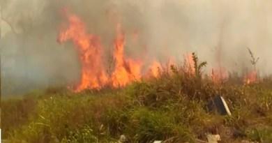 fogo queimadas novo progresso