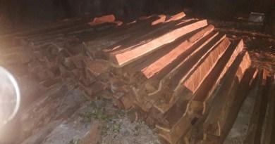 madeira-apreendida