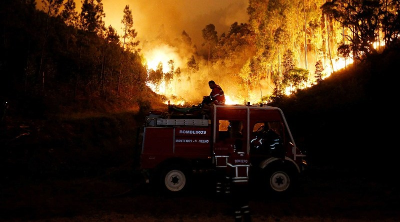 Firefighters work to put out a forest fire near Bouca, in central Portugal, June 18, 2017.  REUTERS/Rafael Marchante     TPX IMAGES OF THE DAY - RTS17J5O