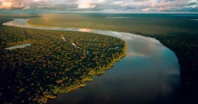 """Río Purus, afluente de la margen derecha del río Amazonas, Brasil. © Paulo Santos/2001 CRÉDITO OBRIGATÓRIO USO EXCLUSIVO PARA DIVULGAÇÃO DA OBRA """"AMAZONÍA BAJO PRESIÓN"""". PARA OUTROS USOS, CONSULTE O FOTÓGRAFO PAULO SANTOS. paulosantos@interfoto.com.br 91 81670855 / 32228532 / 87085130"""