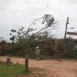 Ventania derrubou árvores e deixou sem energia a cidade e bairros de Novo Progresso