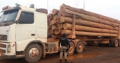caminhão madeira