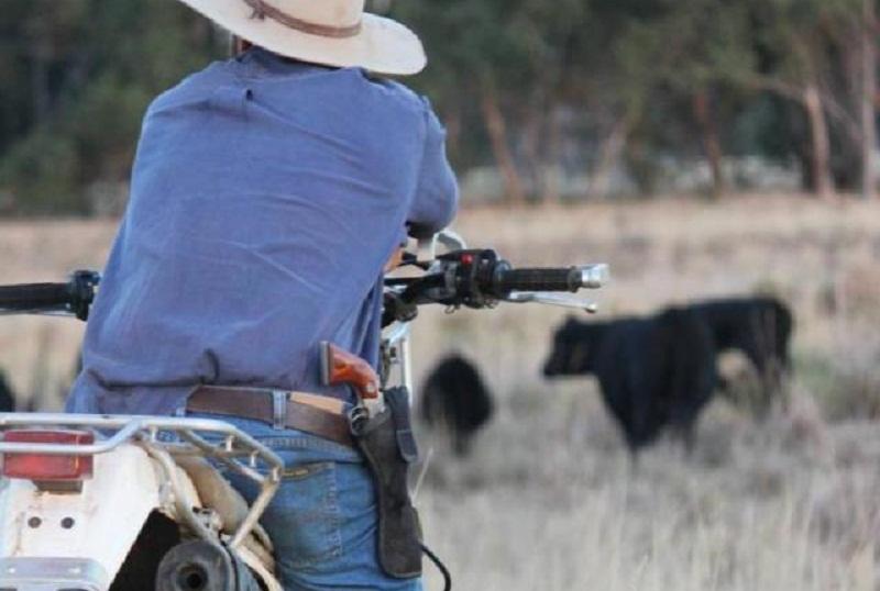 Aprovado porte rural de armas, confira regras