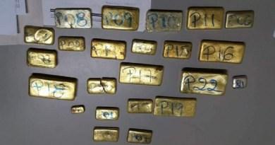 Ouro é encontrado em destroços de avião que caiu no Amazonas-(Foto: Divulgação/Polícia Civil)