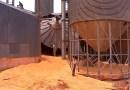Homem morre soterrado por 150 toneladas de milho em MT, após desabamento de paredes de silo