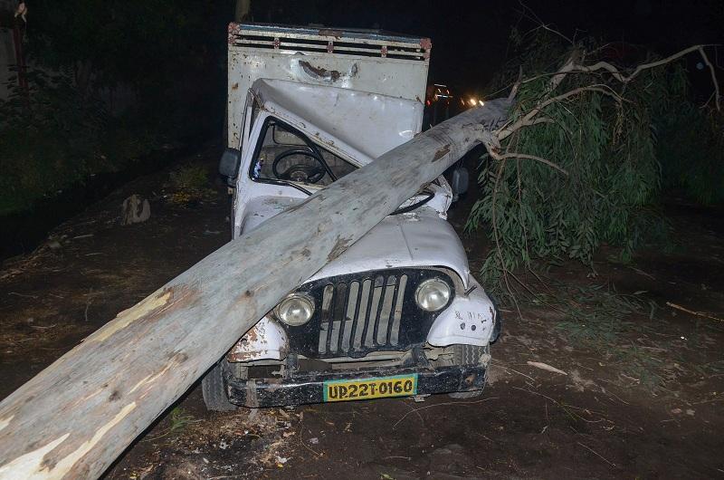 Árvore cai em veículo em Bareilly, no estado de Uttar Pradesh, durante tempestade de areia (Foto: AFP)