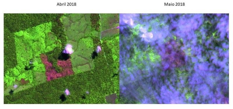 Polígono desmatado em abril. Imagem: Imazon.