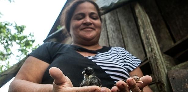 (Foto:Lilo Clareto/Repórter Brasil)- Osvalinda Pereira sofre ameaças constantes de morte no Pará