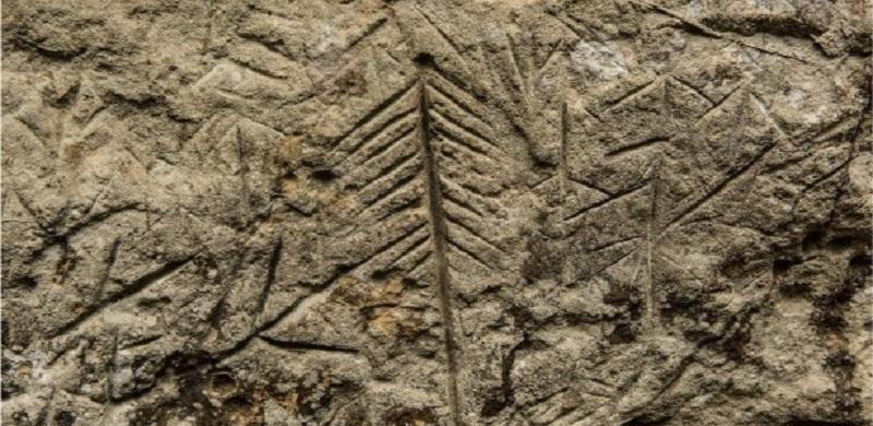 (Divulgação/Peoples Palace Project) -Uma das gravuras apagadas; arqueológos dizem não ser possível precisar a data exata delas, por estarem em rocha