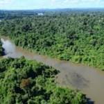 Fim da piracema libera pesca amadora e profissional em rios de Novo Progresso e região