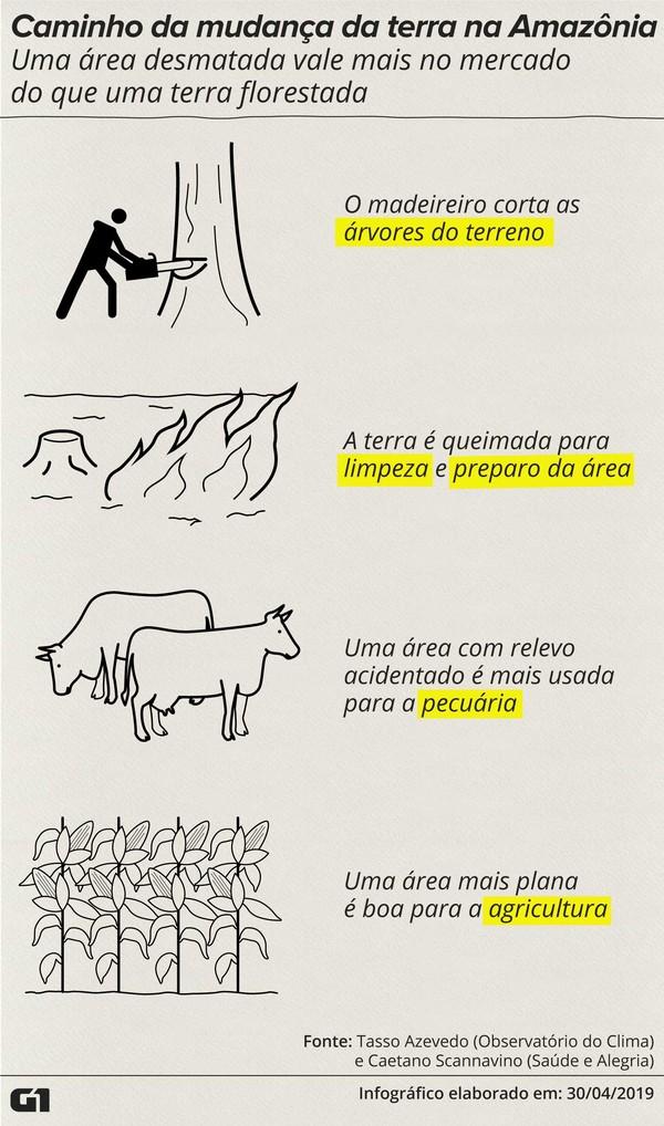 arte-1-caminho-mudanca-terra-amazonia