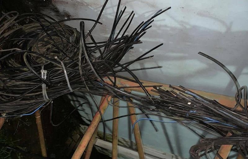 Cabos danificados pelo vândalo.(Foto:Reprodução)
