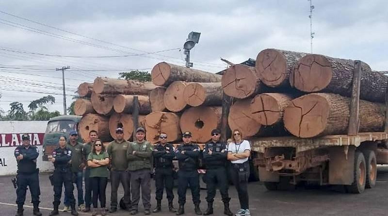madeira tucurui