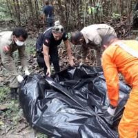 Corpo de piloto é removido de avião encontrado em área de garimpo
