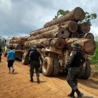Pará intensifica combate ao desmatamento na região da Rodovia Santarém-Cuiabá