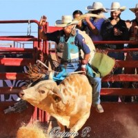 Progressense realiza temporada vitoriosa no México
