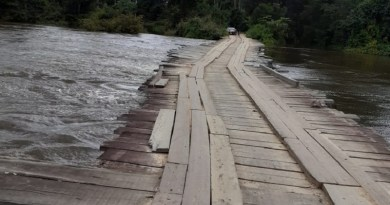 jamanxim ponte